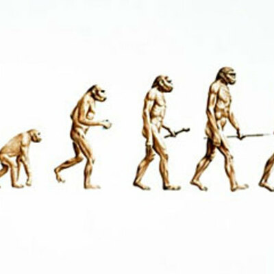 Darwin's Evolution Theory and Influences timeline
