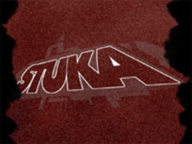 Stuka by Orion