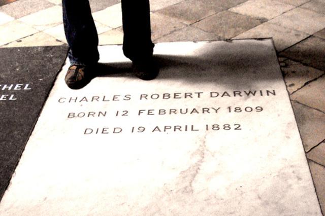 Dawrins Burial