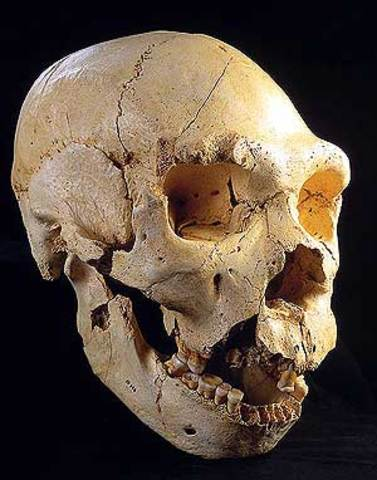 800.000 años atrás