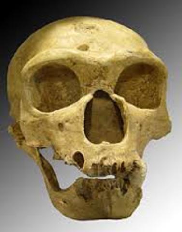 Hace 230.000 - 28.000 años