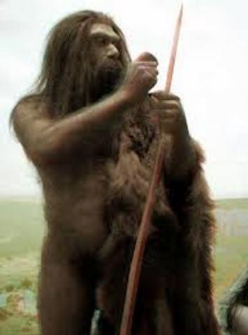 Homo antecessor.