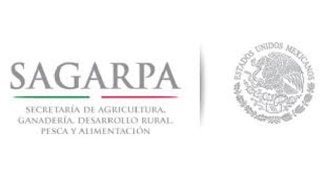Programa Sectorial De Agricultura, Ganadería, Desarrollo Rural, Pesca Y Alimentación