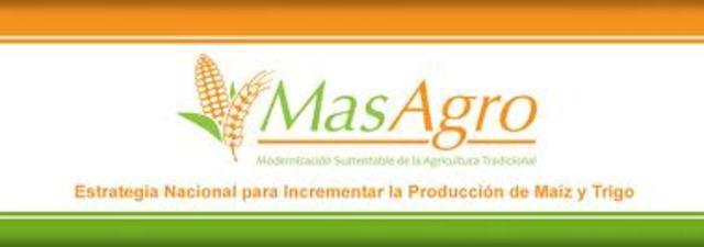 MASAGRO