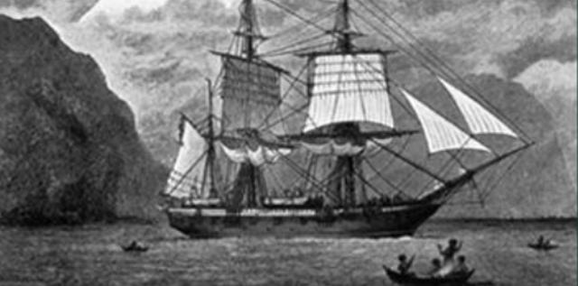 Beagle Voyage