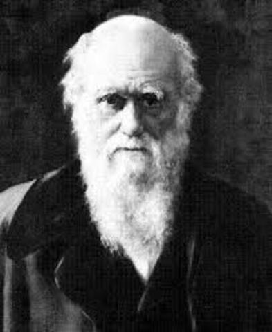 Neo Darwinson