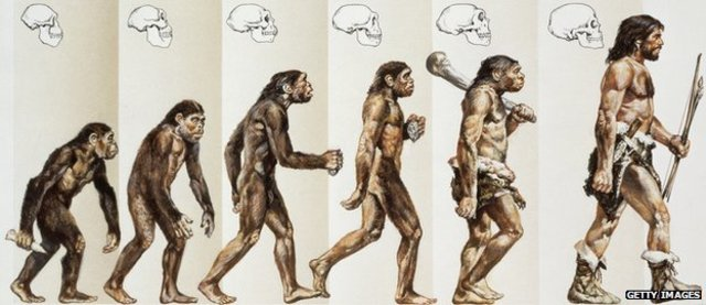 Evolution Accepted