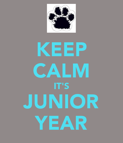 Junior Year Begins