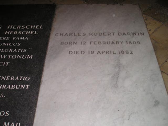 Darwin's burial