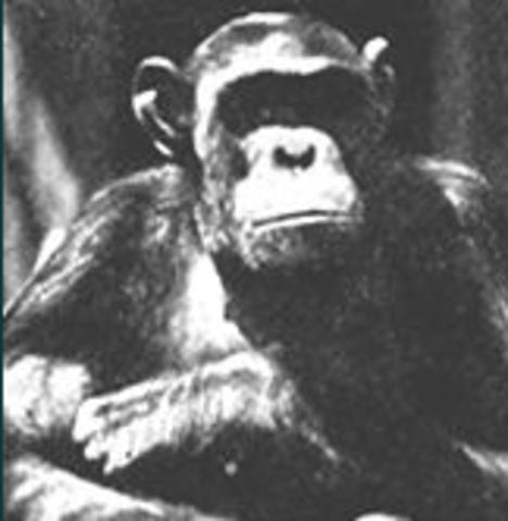 First Anti-evolution bills