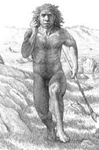Homo antecessor PARTE 1