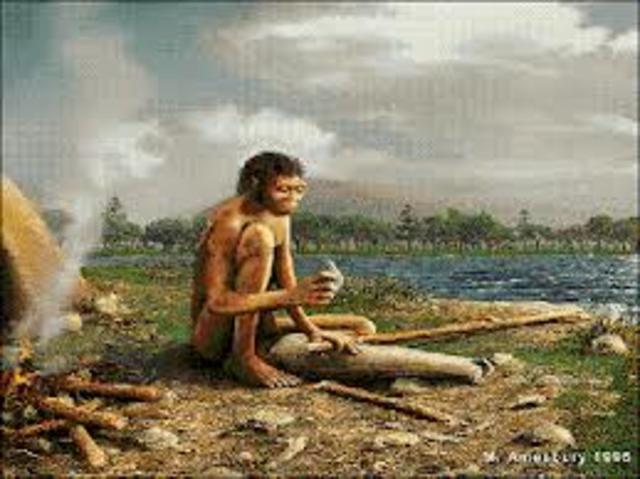 Homo erectus PARTE 1