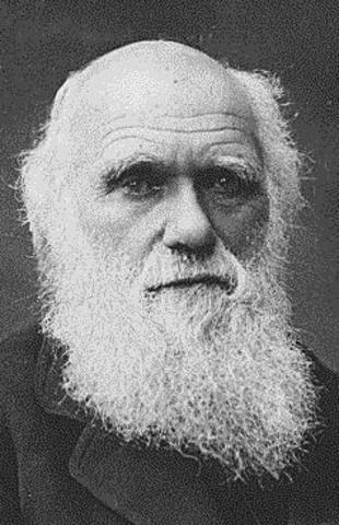 Neo Darwinism: