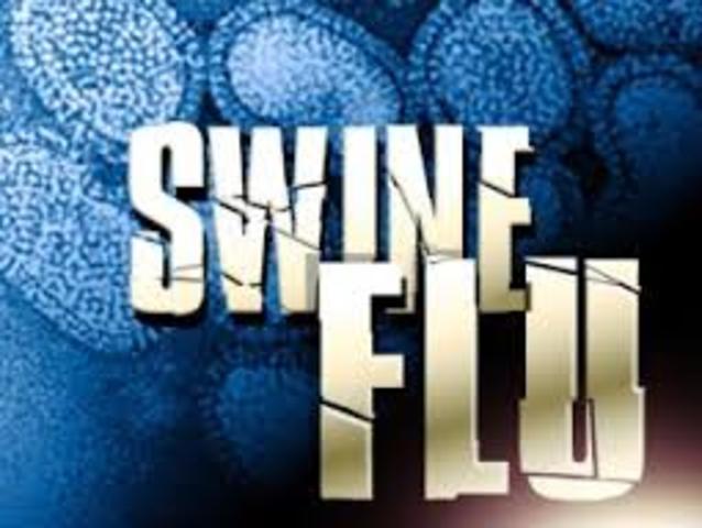 Swine Flu Scare