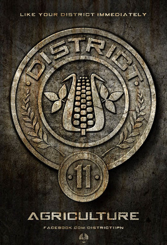 Tour in District 11