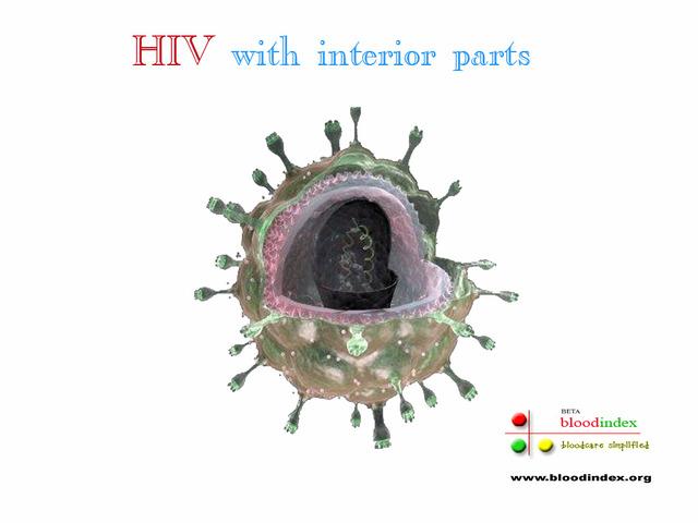 Second virus found