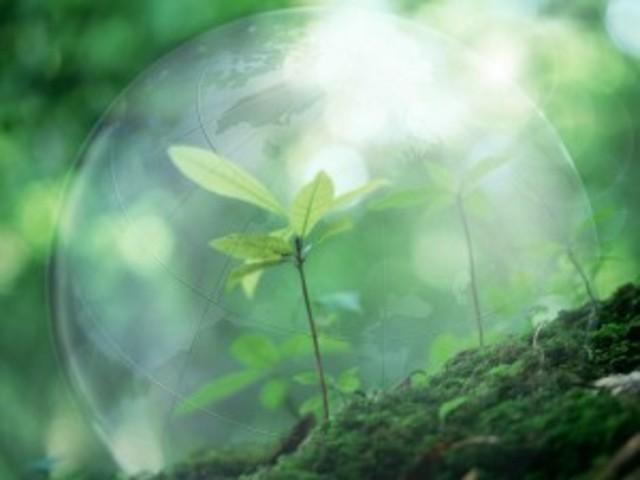 La Comisión de Ecológia  y Medio Ambiente de LVII Legislatura de la Camara de Diputados, Solicitó la Reforma del Artículo 39 de la LGEEPA que fue aprovada en noviembre de 1999