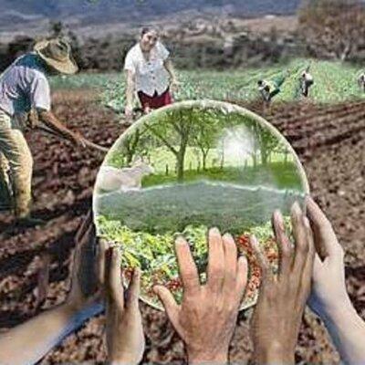 Desarrollo Sustentable y Educación Ambiental timeline