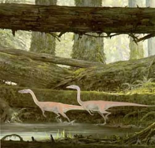 Dinosaurs Take First Steps