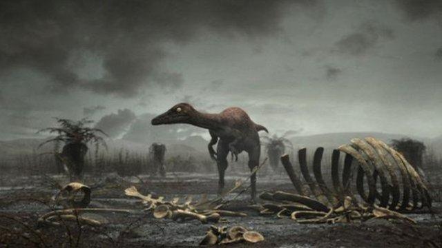 Dinosaurs Go Extinct