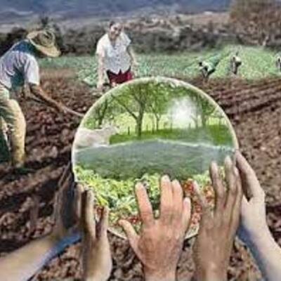 Principales antecedentes internacionales y nacionales de la educación ambiental y el desarrollo sustentable. Santos C.O timeline