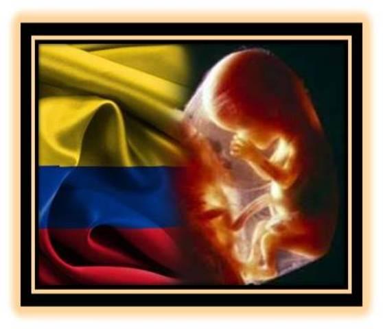 08 de mayo 2013  marcha en Bogota Colombia  en contra del aborto