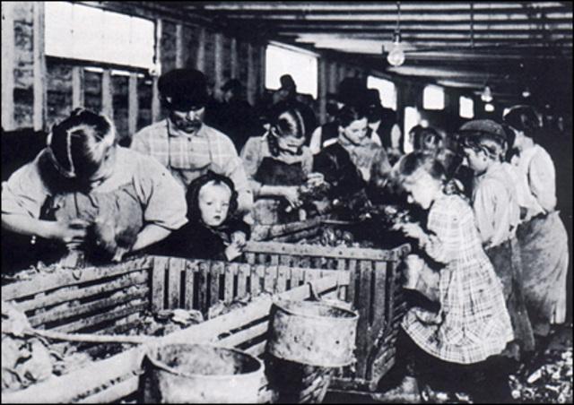 Child Labor Tax Case