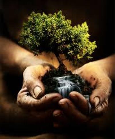 1er Seminario Internacional de Educación Ambiental Belgrado