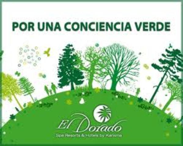Se crea la DirecciónGeneral de Educación Ambiental