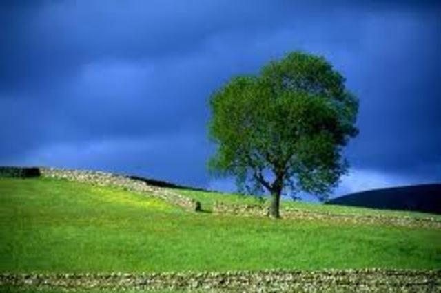 La Comisión de Ecología y Medio ambiente de la LVII Legislatura de la Cámara de Diputados, solicitó la reforma al articulo 39 de la LGEEPA, que fue aprobada en noviembre de 1999 (México)