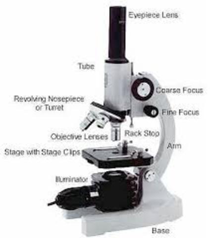 The beginning of microscopy