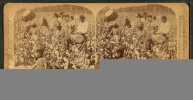 Cotton counted for half the value of all American exports after 1840