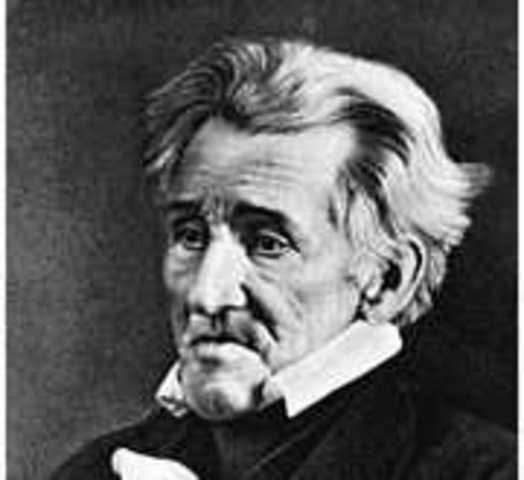 Andrew Jackson elected as President