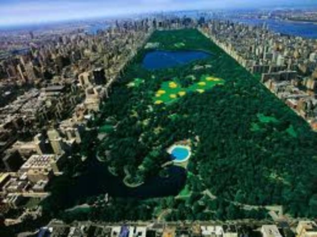 Central Park y Brooklyn