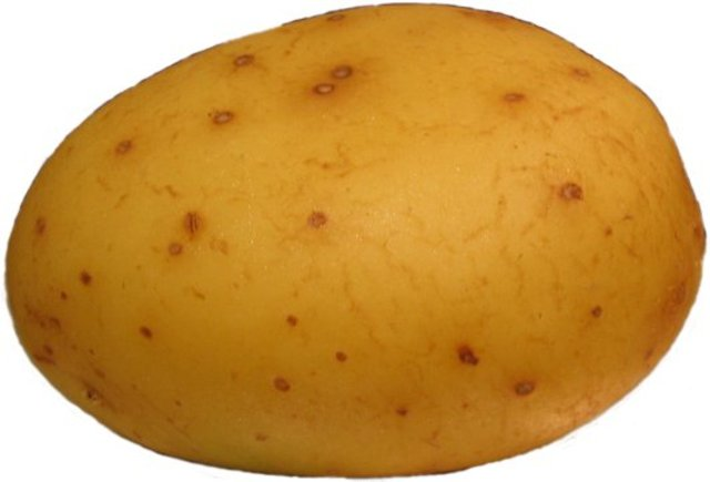 Potato Famine