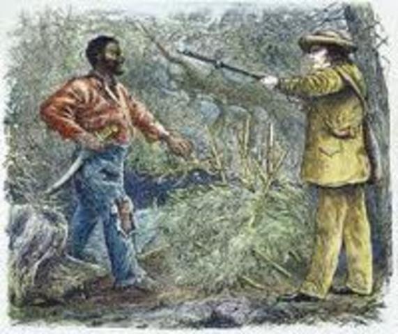Vesey slave rebellion