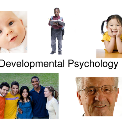 Developmental Psychology timeline