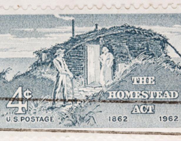 Goal 4: homestead act