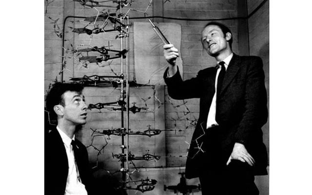 Watson, Crick & Wilkins awarded Nobel prize
