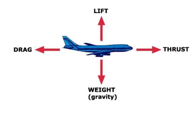 6WI Kidblog Activity on the Flight Unit