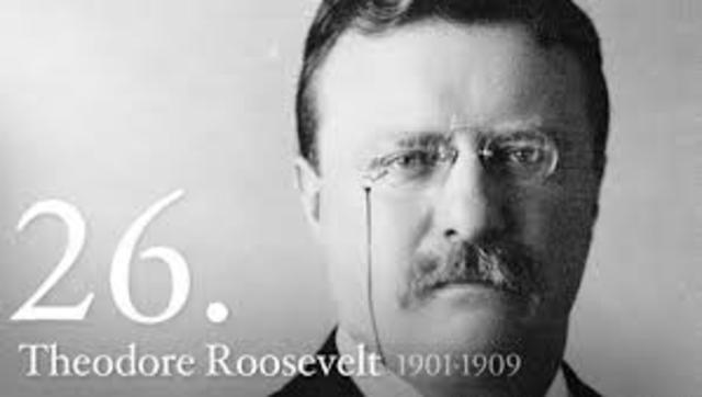 Teddy Roosvelt President