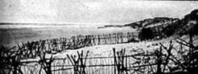 First Battle of Ypres ends November 22, 1914)