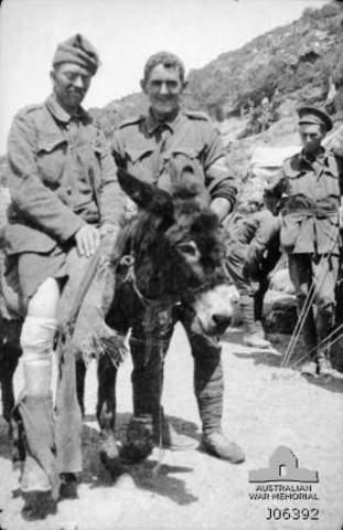 Australia during May 1915