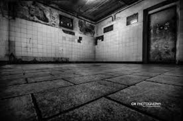 Mass Murder at Birkenau