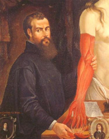 Vesallius Publishes human anatomy textbook