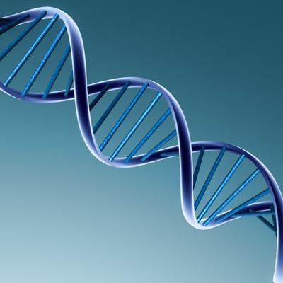 History of DNA timeline