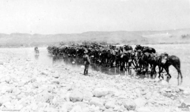 Australian light horse charge on Beersheba