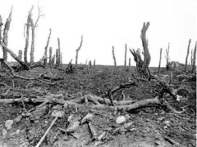 Battle of Pozières