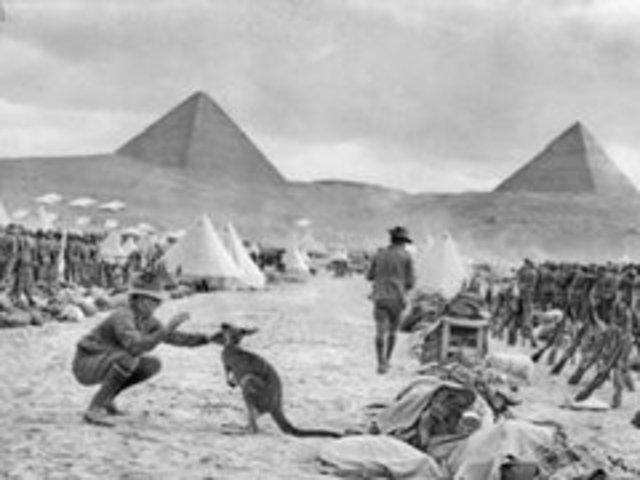 troops arrive in egypt