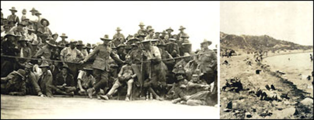 Troops Withdrawn From Gallipoli